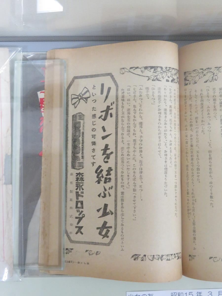 f:id:kikuyo-lib:20210208135437j:plain