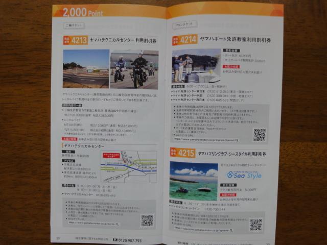 f:id:kikyohana:20190331122316j:plain