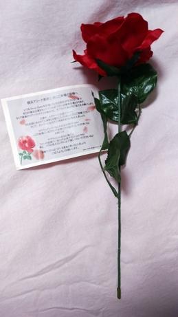 f:id:kima-ala:20170521115300j:plain