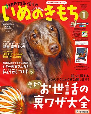 f:id:kimaco:20161130124315j:plain