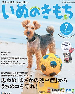 f:id:kimaco:20170609133348j:plain