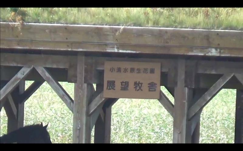 f:id:kimagure-hitoritabi:20201025151031j:plain