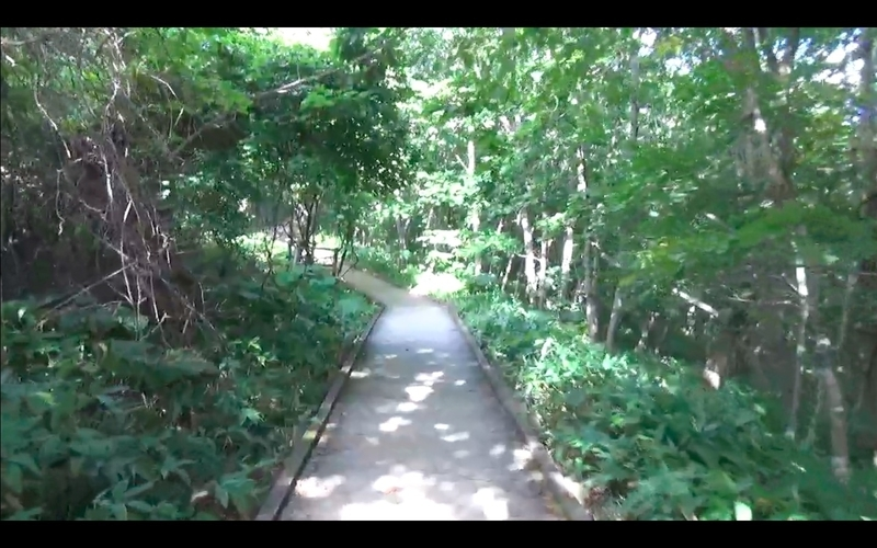 f:id:kimagure-hitoritabi:20201107162625j:plain