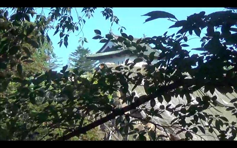 f:id:kimagure-hitoritabi:20201119225918j:plain