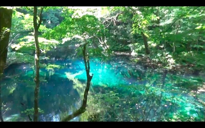 f:id:kimagure-hitoritabi:20201121002011j:plain