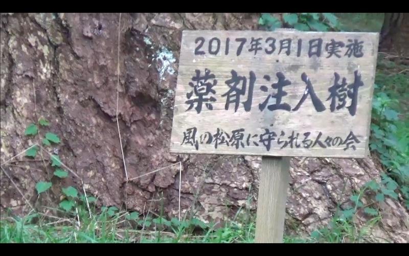 f:id:kimagure-hitoritabi:20201122013730j:plain