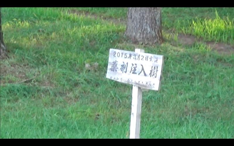 f:id:kimagure-hitoritabi:20201122013735j:plain