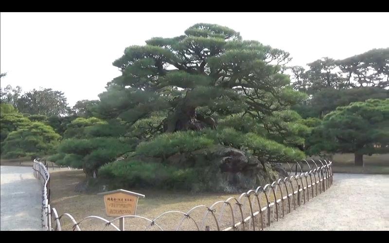 f:id:kimagure-hitoritabi:20210111212408j:plain