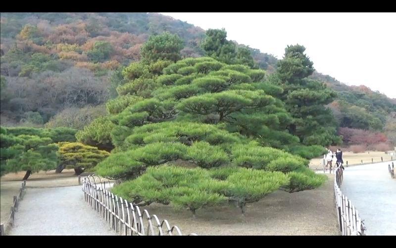 f:id:kimagure-hitoritabi:20210111214316j:plain