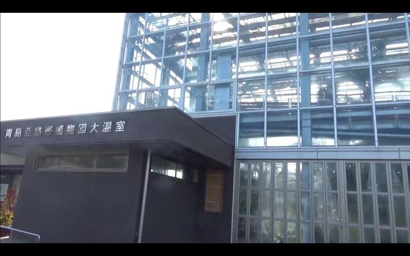 f:id:kimagure-hitoritabi:20210223124927j:plain