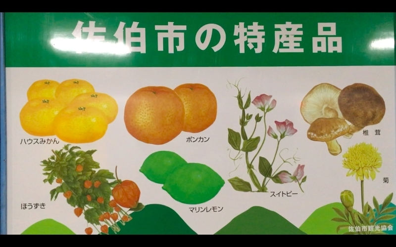 f:id:kimagure-hitoritabi:20210223193133j:plain