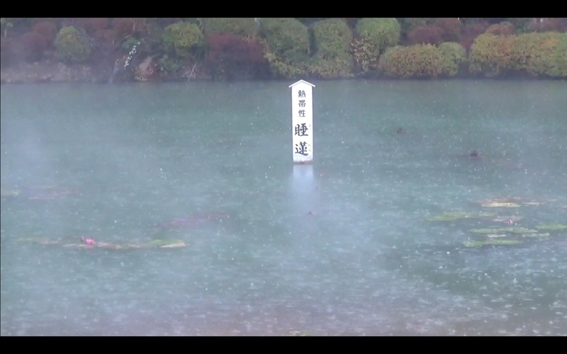 f:id:kimagure-hitoritabi:20210303113735j:plain