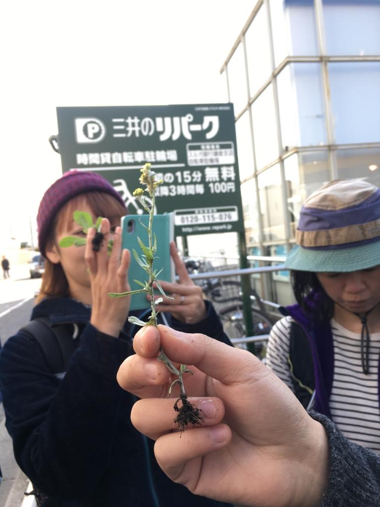 f:id:kimagurecafe:20161105002207j:plain