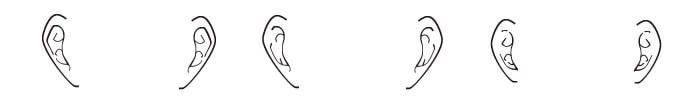 f:id:kimagureguren:20170214220928j:plain