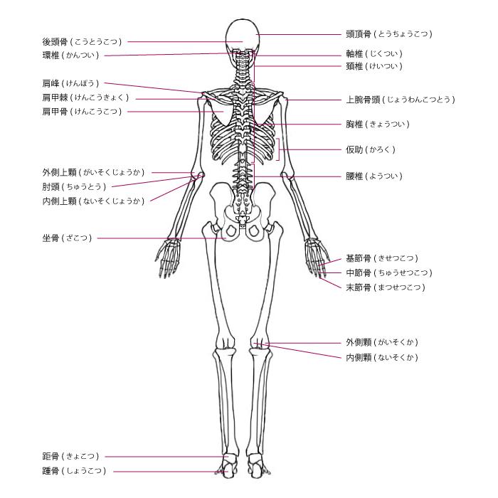 f:id:kimagureguren:20170328205846j:plain