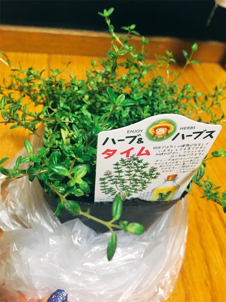 f:id:kimagureouji:20180731221507j:image