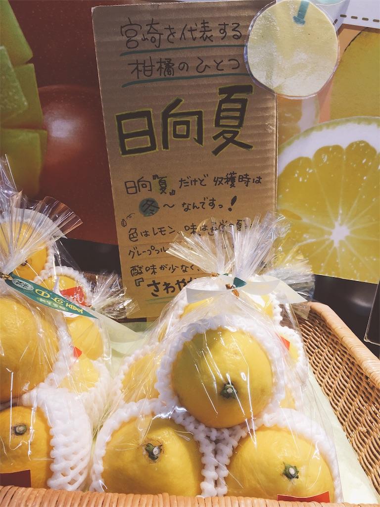 f:id:kimagureouji:20190612003235j:image