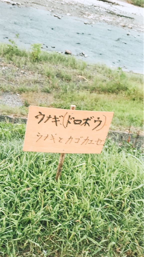f:id:kimagureouji:20200817002709j:image