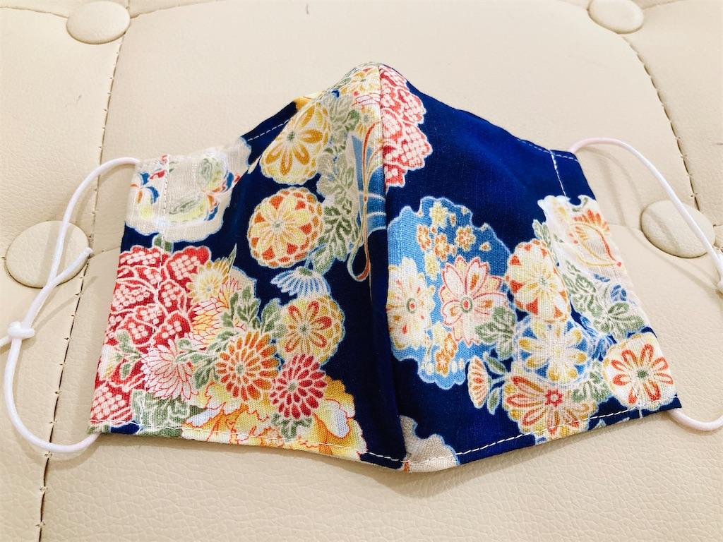 f:id:kimagureouji:20200928002125j:image