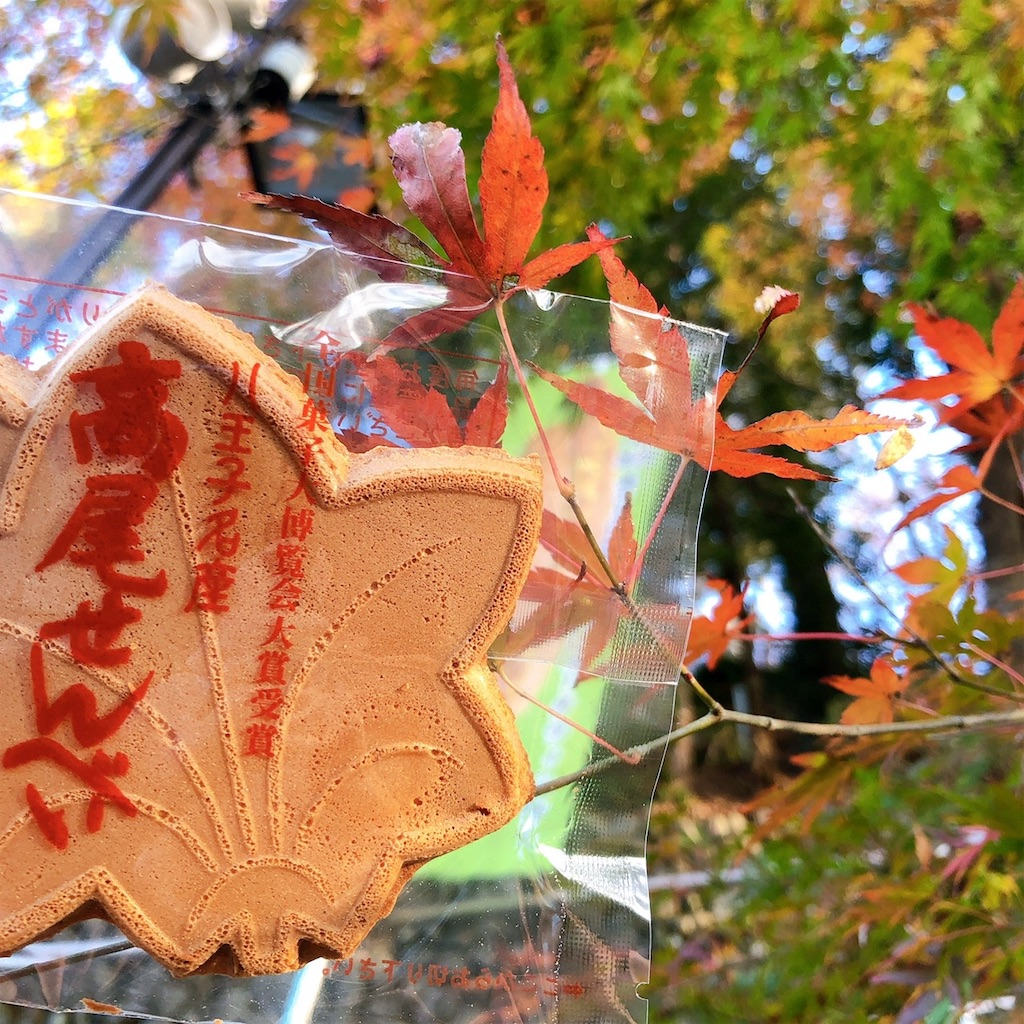 f:id:kimagureouji:20201207163725j:image
