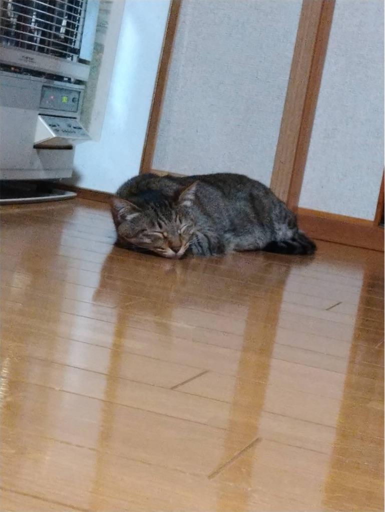 f:id:kimagureouji:20210109212154j:image