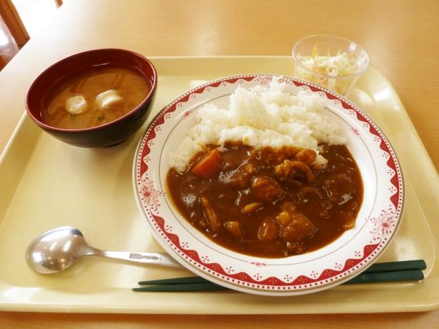 f:id:kimagureouji:20210119173846j:plain