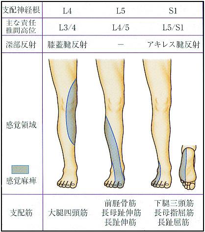 f:id:kimama-kennsyui:20210413220751p:plain