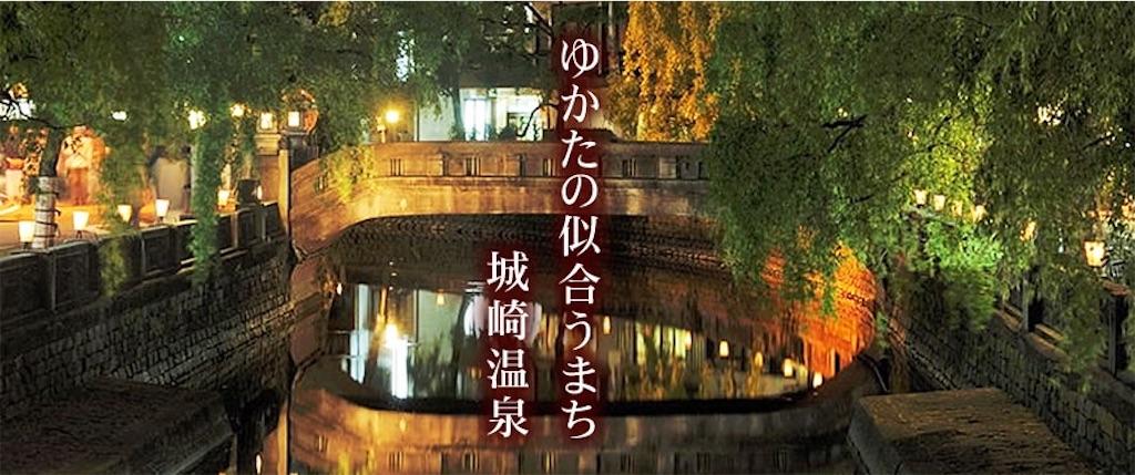 f:id:kimamaneko-miwa:20200530225103j:image