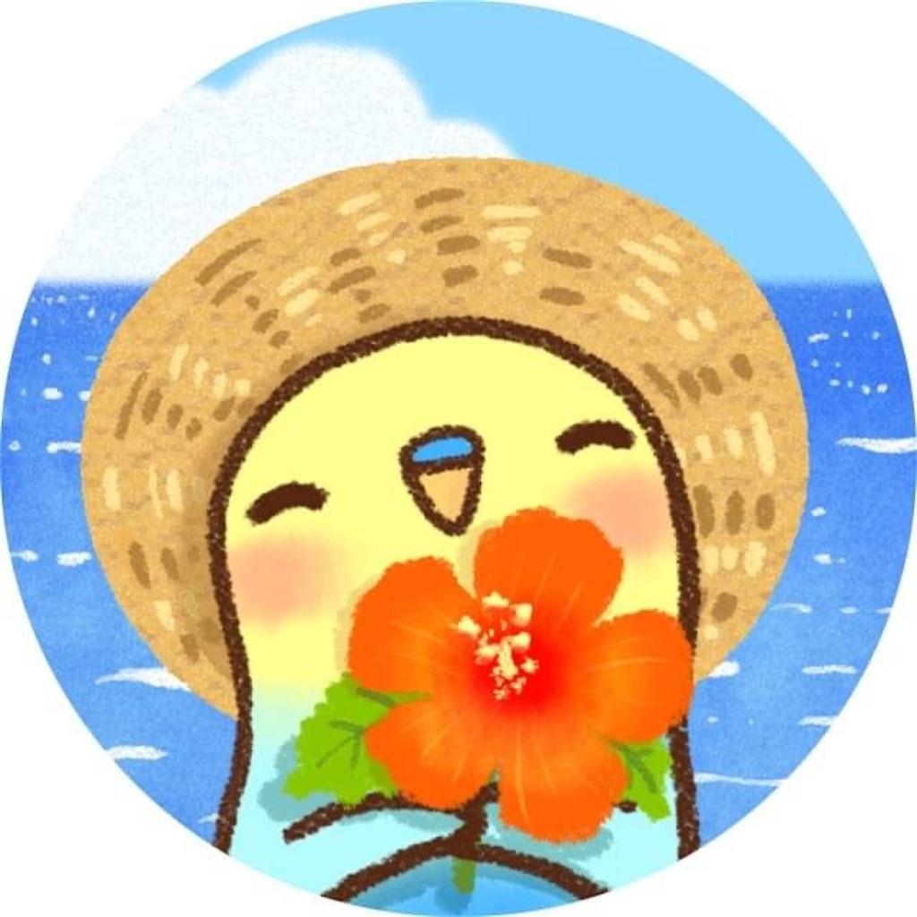 f:id:kimamaneko-miwa:20200626073223j:image