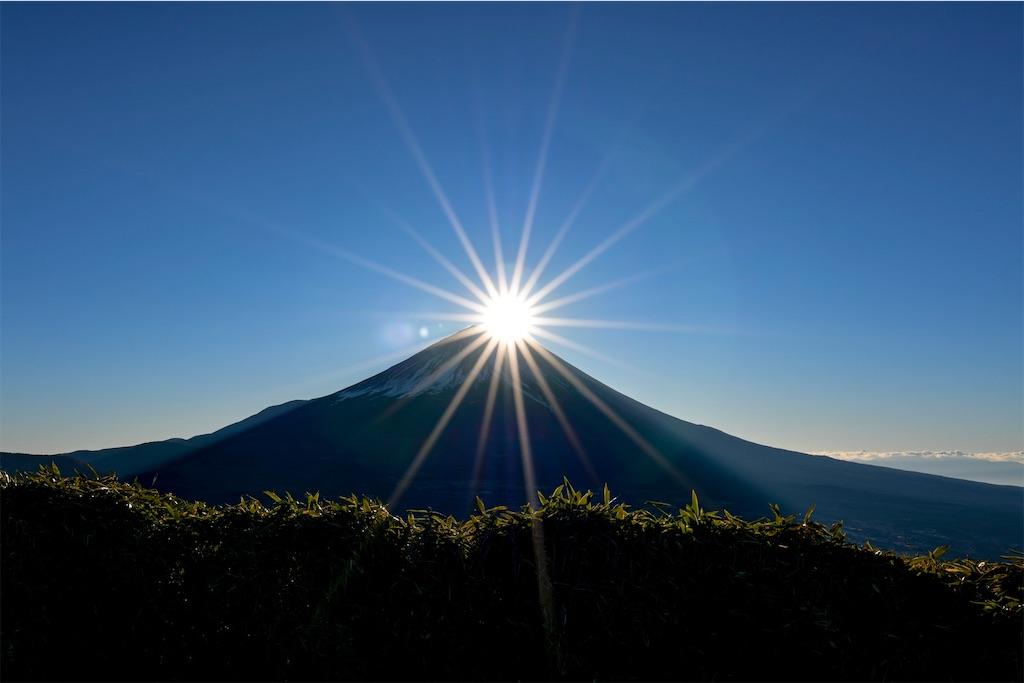 f:id:kimamaneko-miwa:20200722071149j:image