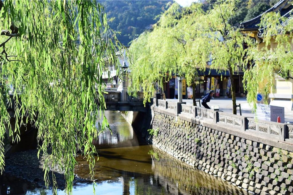 f:id:kimamaneko-miwa:20200806000314j:image