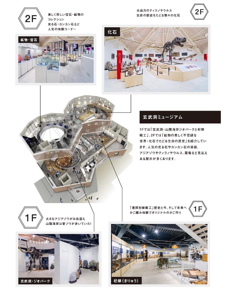 f:id:kimamaneko-miwa:20200806150559j:image