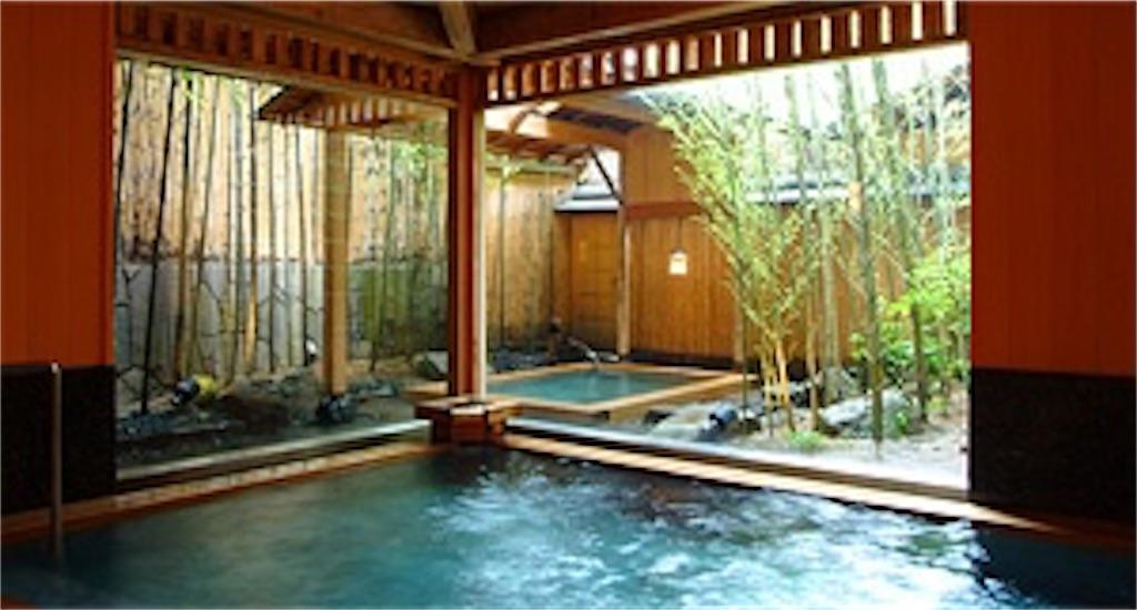 f:id:kimamaneko-miwa:20200807213750j:image