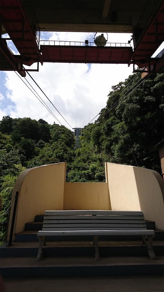 f:id:kimamaneko-miwa:20200815145429j:image