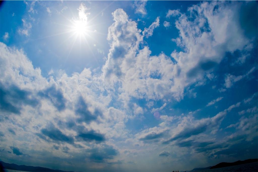 f:id:kimamaneko-miwa:20200816193614j:image