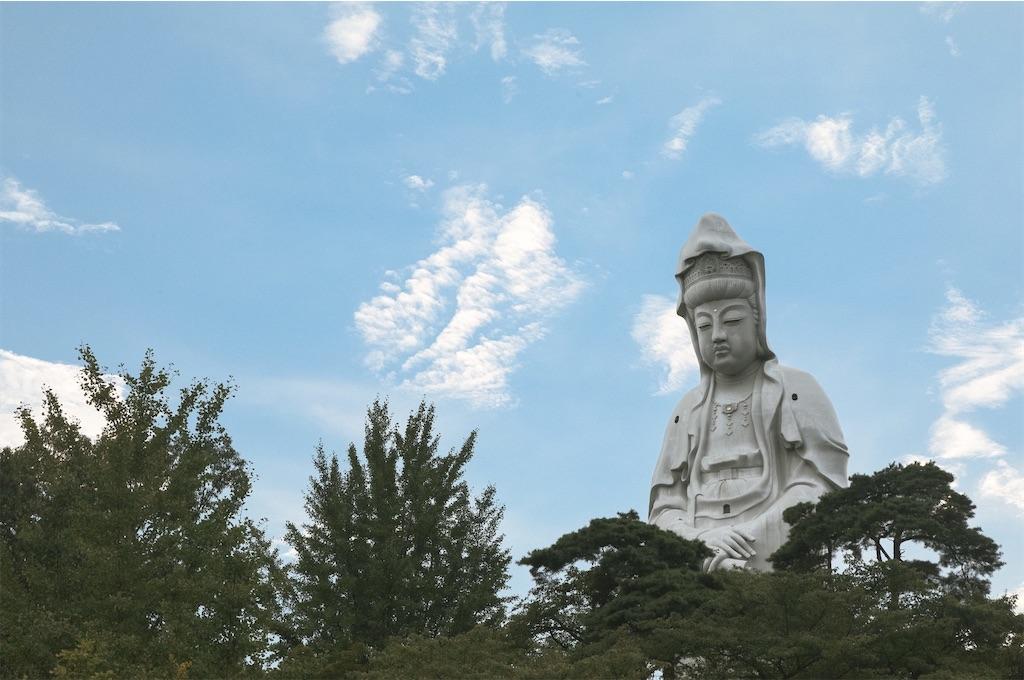 f:id:kimamaneko-miwa:20200902124745j:image