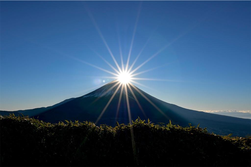 f:id:kimamaneko-miwa:20201013072911j:image