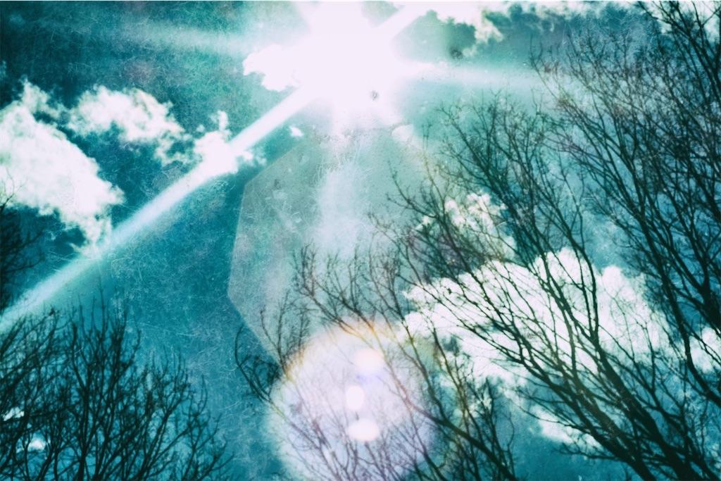 f:id:kimamaneko-miwa:20201016170157j:image