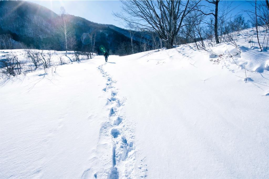 f:id:kimamaneko-miwa:20201026103657j:image