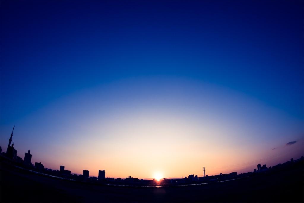 f:id:kimamaneko-miwa:20210110113926j:image