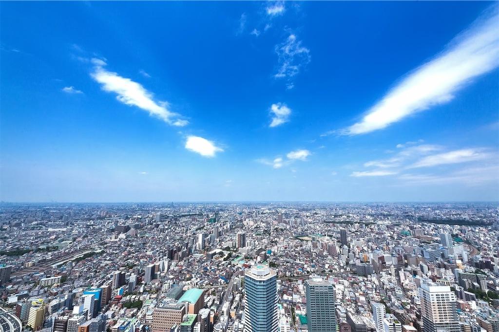 f:id:kimamaneko-miwa:20210201123507j:image