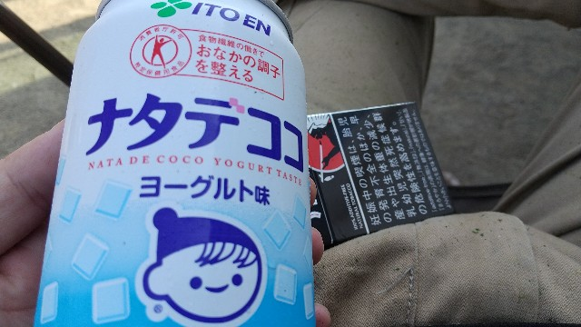 f:id:kimamaniyuuzento:20201119123259j:image