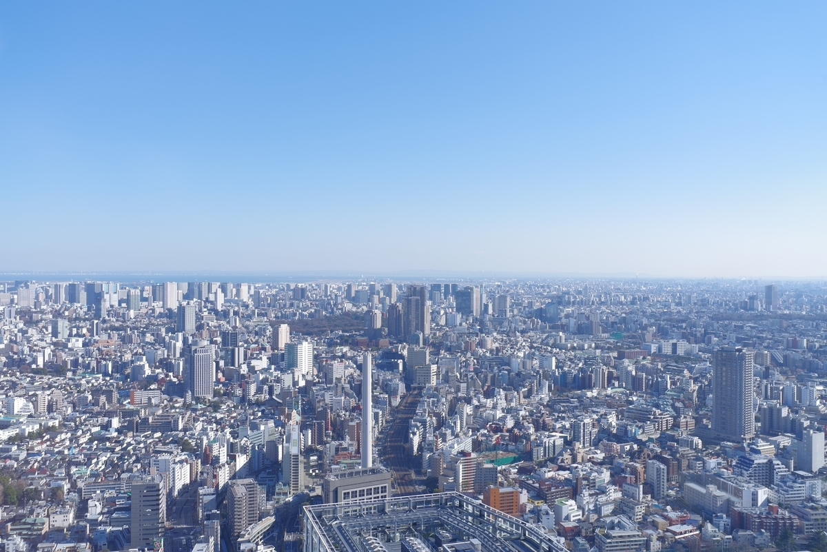 f:id:kimamaniyuuzento:20210202221914j:plain