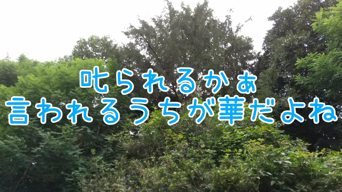 f:id:kimamaniyuuzento:20210906225938p:plain