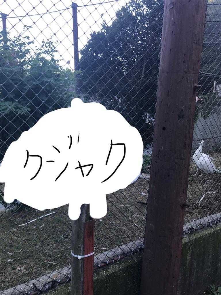 f:id:kimashufu:20170925215428j:image