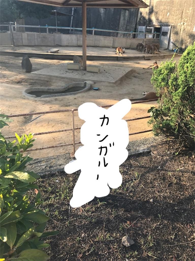 f:id:kimashufu:20170925215652j:image