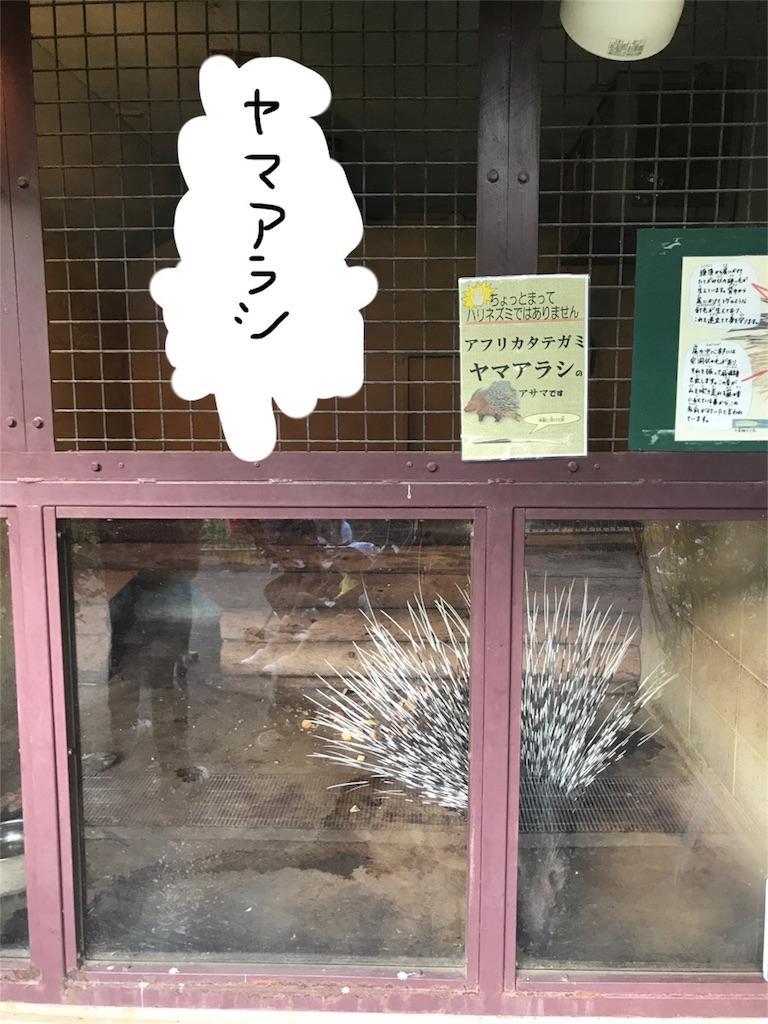 f:id:kimashufu:20170925220200j:image