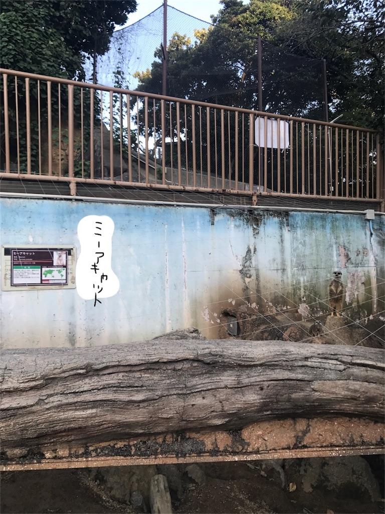 f:id:kimashufu:20170925220851j:image