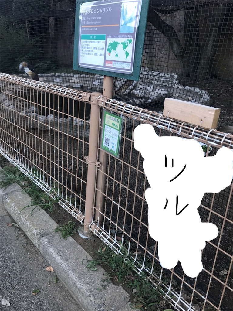 f:id:kimashufu:20170925221319j:image