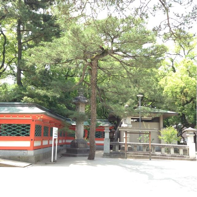 f:id:kimaya:20140529115352j:plain